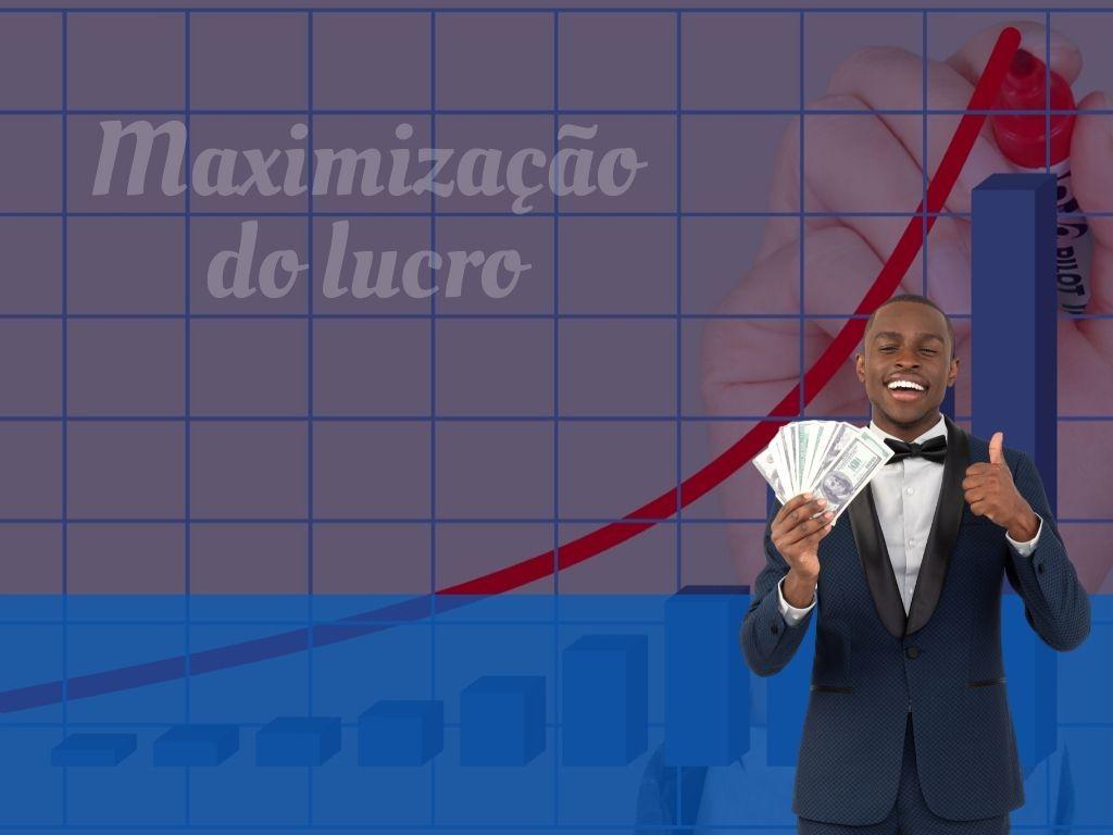 Maximização do lucro